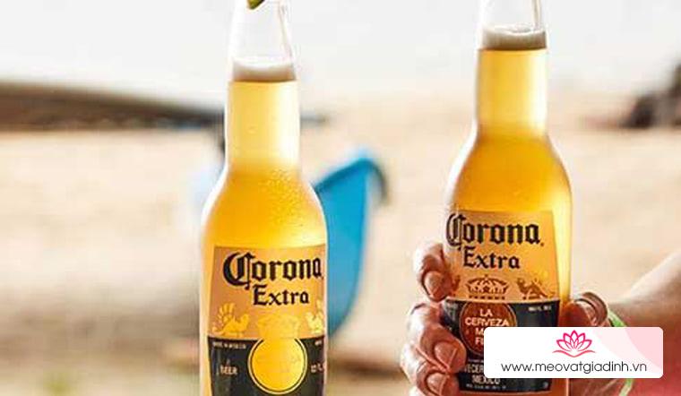 Bia Corona uống sao cho 'chất'