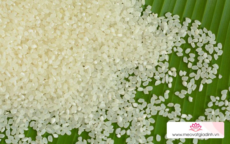 Gạo Nhật là gạo gì? Có những loại gạo Nhật nào ở Mẹo vặt Gia đình?