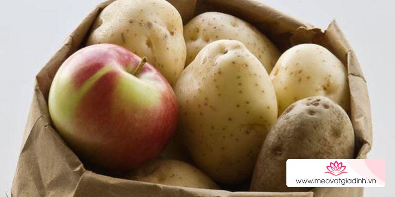 Mẹo bảo quản giúp rau củ quả để cả tuần vẫn tươi ngon như vừa mới mua