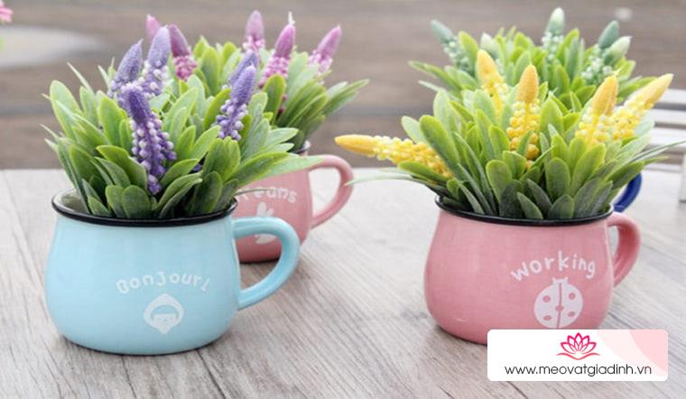 Những loại hoa đẹp mấy cũng không nên trưng trong nhà kẻo phá tài lộc, loại số 3 nhiều người chơi