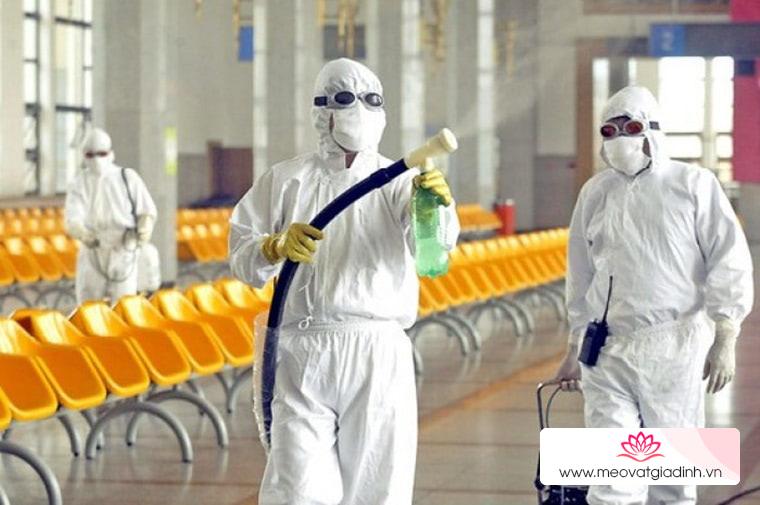 Sử dụng thuốc diệt côn trùng an toàn, không gây hại sức khỏe
