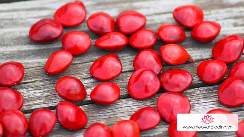 Thực hư về việc ăn chè đậu đỏ vào ngày lễ Thất Tịch sẽ có người yêu, có đúng là như vậy hay không?