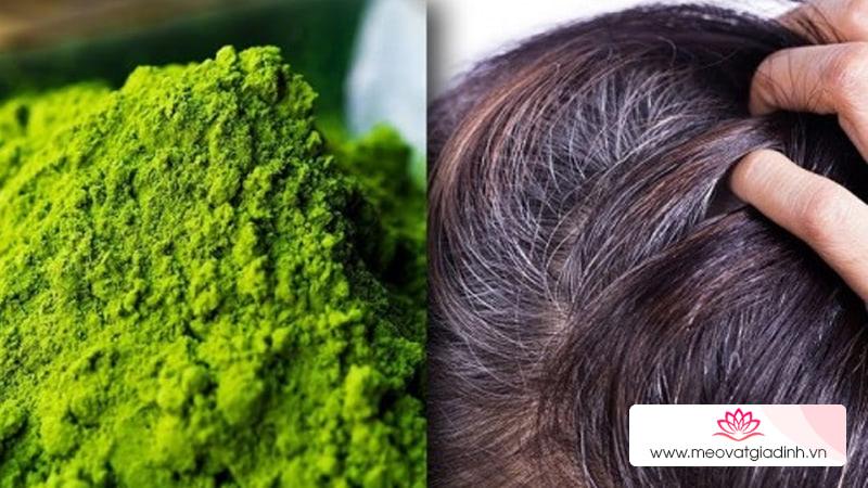 Thuốc nhuộm tóc thảo dược nào tốt nhất hiện nay?