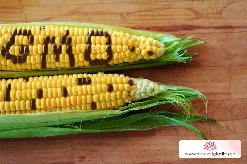 Tổng hợp những loại thực phẩm biến đổi gen phổ biến nhất hiện nay