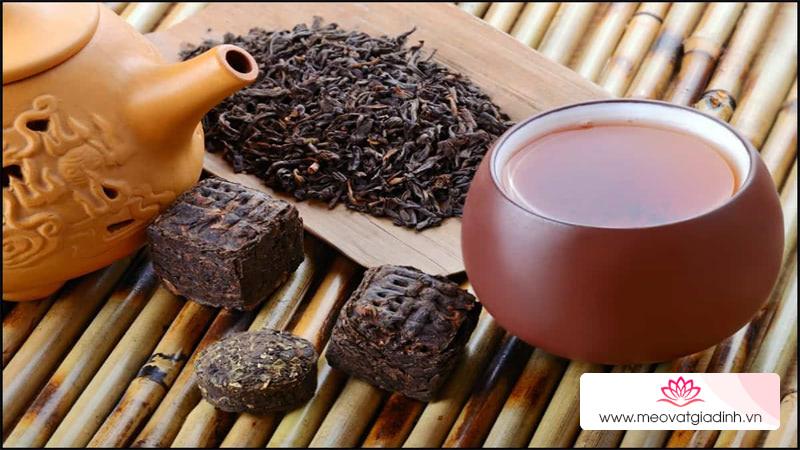 Trà phổ nhĩ là gì? Cách sử dụng trà phổ nhĩ và tác dụng của trà phổ nhĩ với sức khỏe