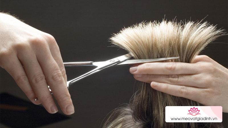 Đầu năm mừng có được cắt tóc, gội đầu không? Vì sao?