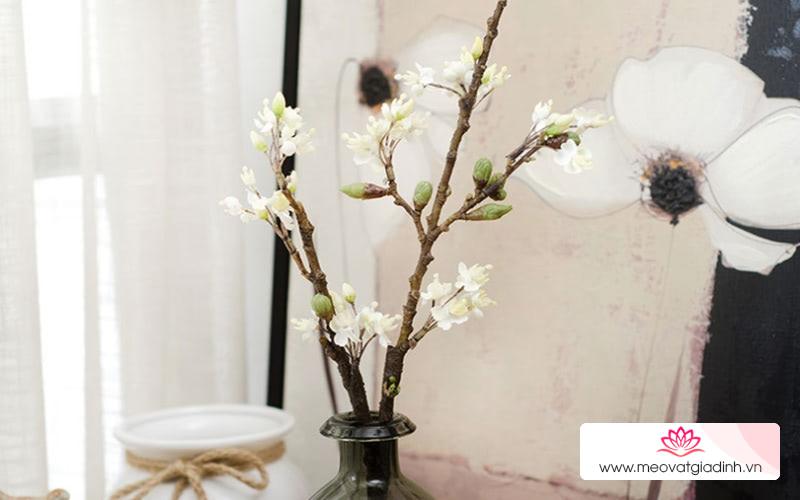 Hoa giả, cây giả sử dụng cả năm, làm ngay cách này vừa sạch vừa đẹp không khác gì đồ mới