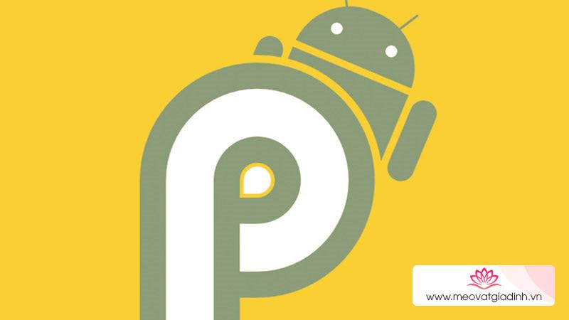 Khám phá 4 tính năng thú vị ẩn trong Android P