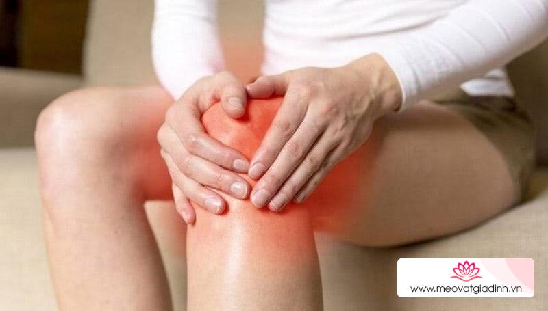 Rau lang hỗ trợ xương khớp hoạt động tốt