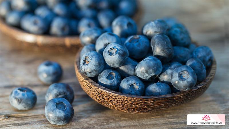 7 Tác dụng của quả việt quất, cách bảo quản và các món ăn từ việt quất
