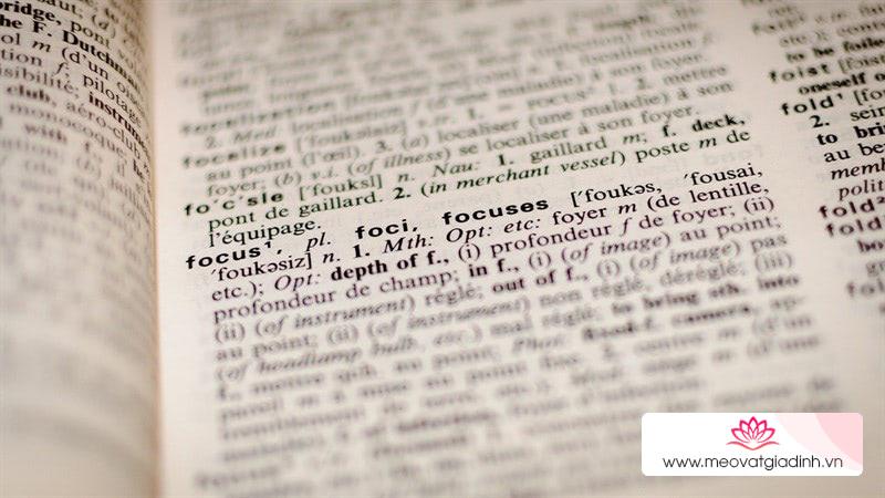 Bubble Dictionary trên Android dịch trực tiếp trên văn bản cực tiện