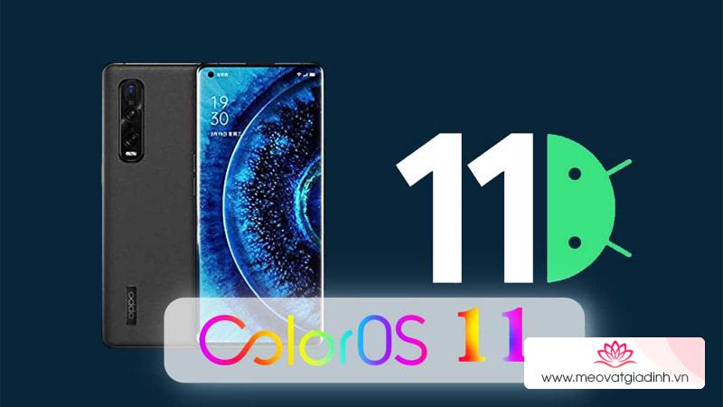 Cách cập nhật Android 11 Beta/ColorOS 11 Beta mới cho điện thoại OPPO