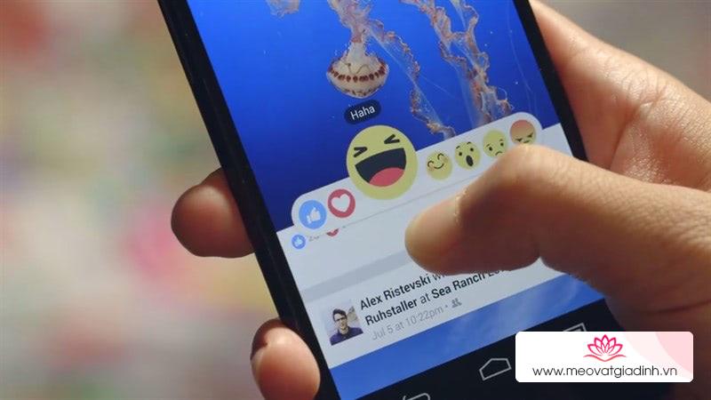 Cách xài Facebook chặn quảng cáo, tải video story, có cả darkmode không nên bỏ lỡ