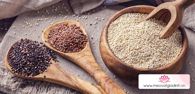 Hạt Quinoa là gì? Công dụng và 3 cách nấu hạt Quinoa mà bạn chưa biết