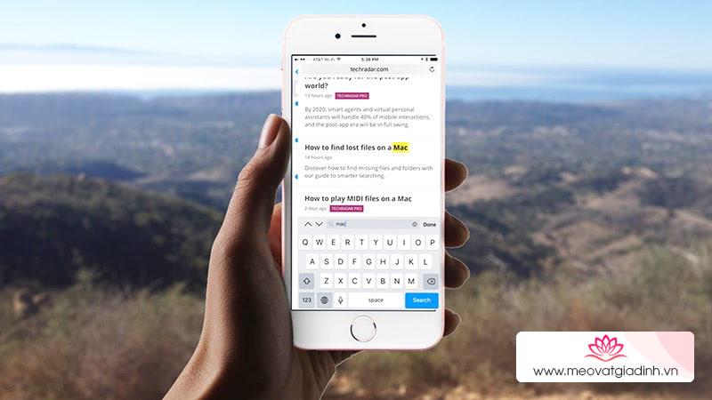 iOS 13: Cách tự động đóng tab Safari trên iPhone và iPad