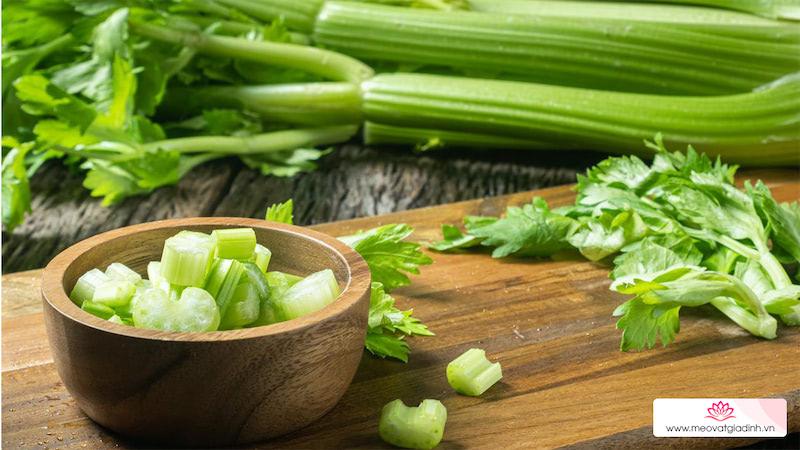 Tác dụng của rau cần tây và các món ăn từ rau cần tây
