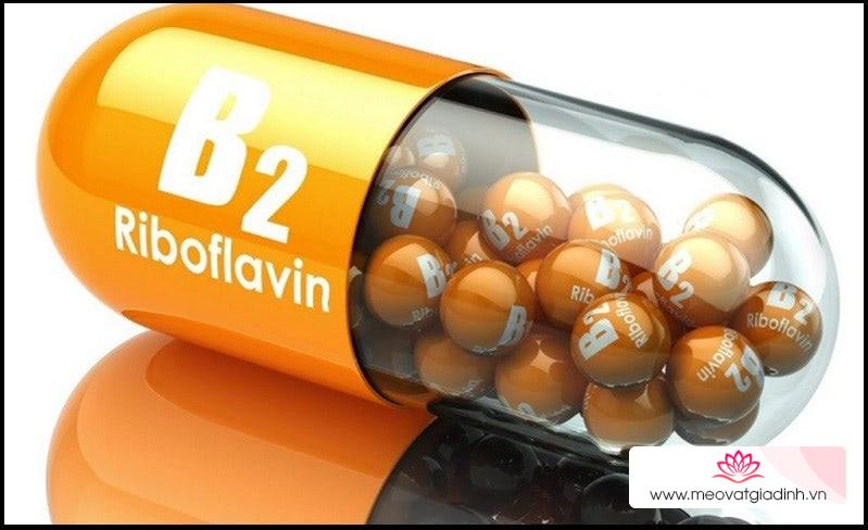 Vitamin B2 - Riboflavin là gì?