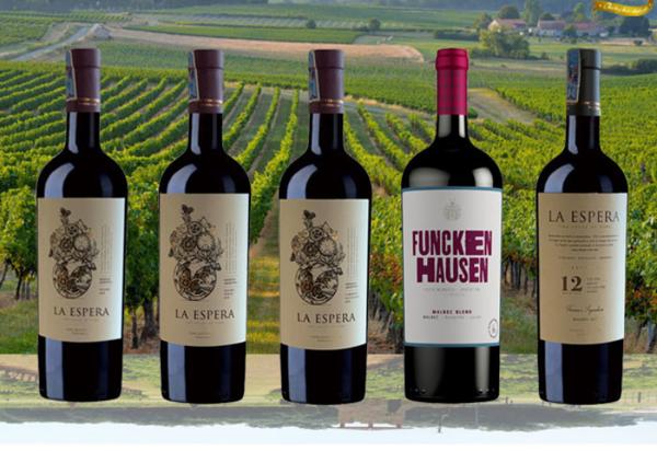 Review Winery.vn nơi bán rượu vang nhập khẩu chất lượng tại TPHCM